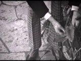 Классический Доктор Кто 1 сезон 6 серия 2 эпизод (1963)